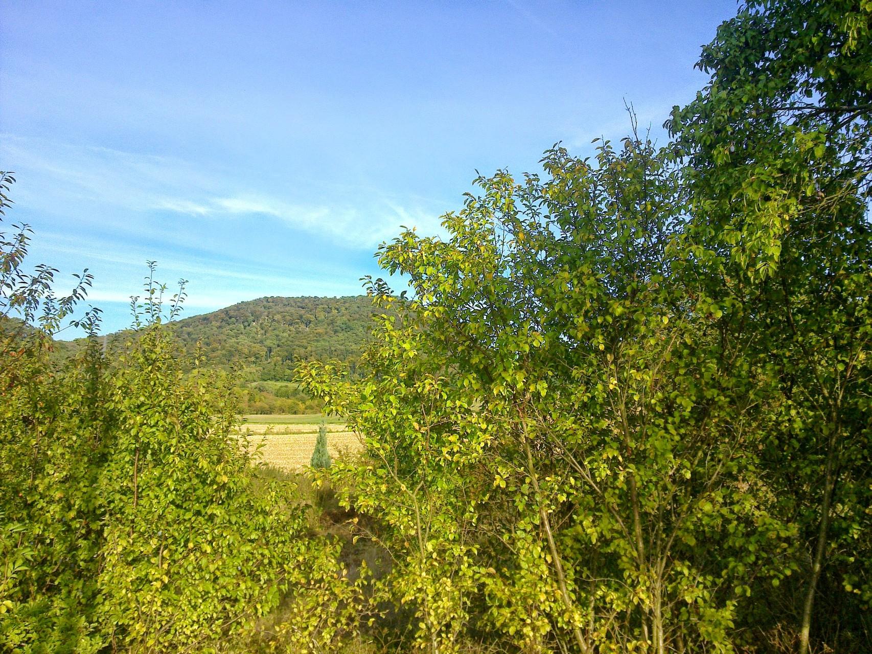 """~ Bild: Spaziergang am """"Sieben-Berge-Ring"""", Blick auf den Hörzen ~"""