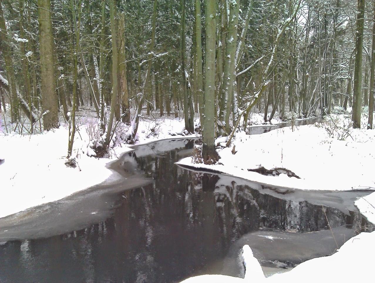 ~ Bild: Die Oste bei Sittensen im Winter ~