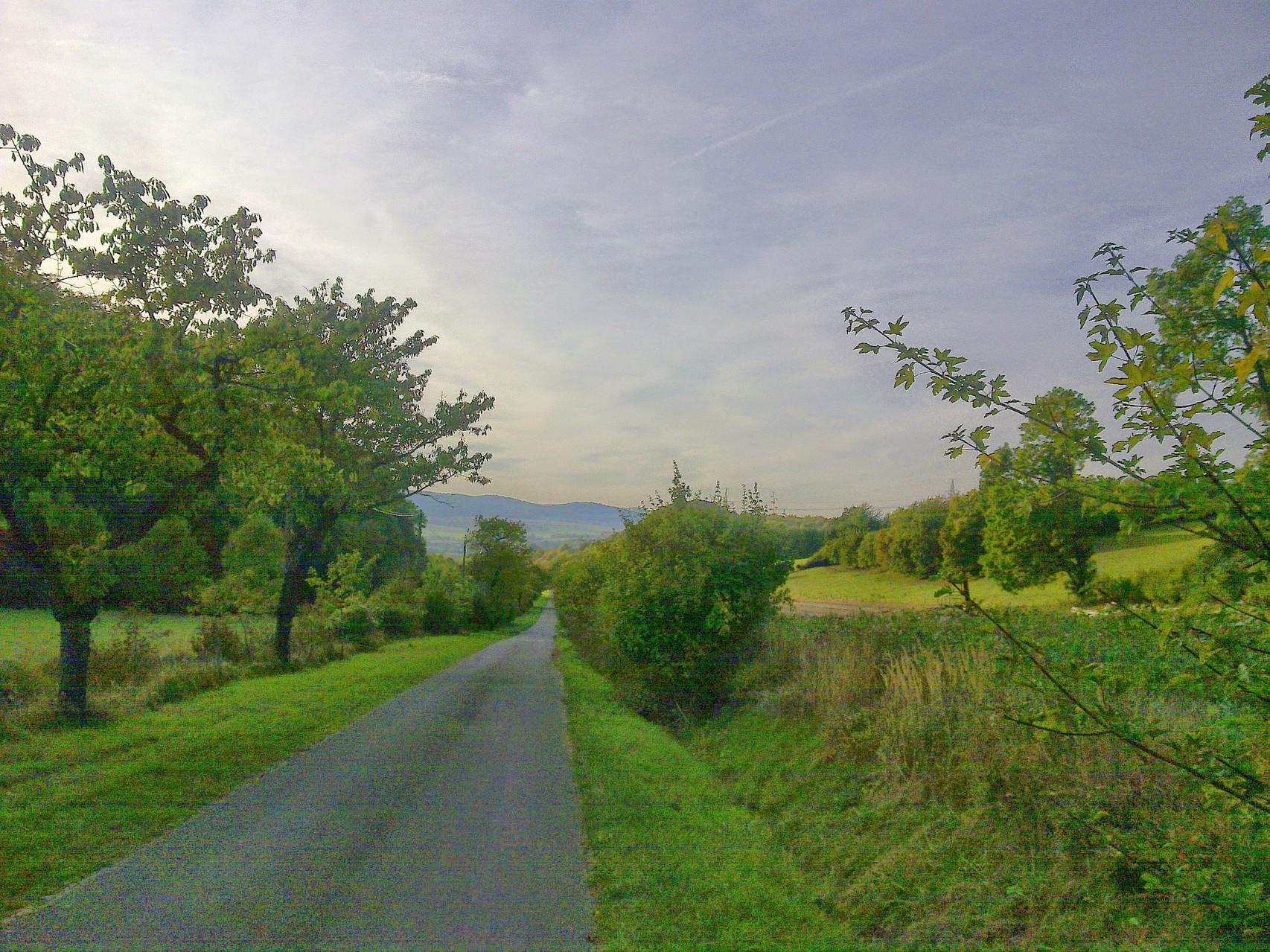 ~ Bild: Rückansicht vom Waldrand (Hörzen/Hohe Tafel (Tafelberg)) in Richtung Brüggen (Leine) ~