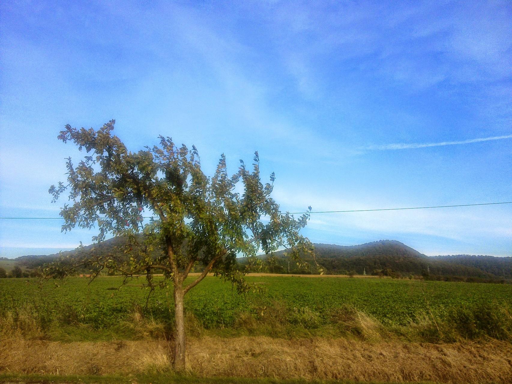 ~ Bild: Panorama-Blick auf die Sieben Berge in Richtung Wettensen ~