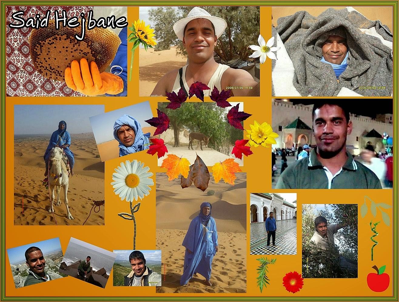 ~ Bild: Said Hejbane ~