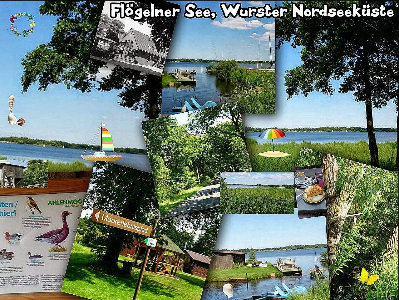 ~ Bild: 'Flögelner See' (Wurster Nodseeküste), 2014 ~
