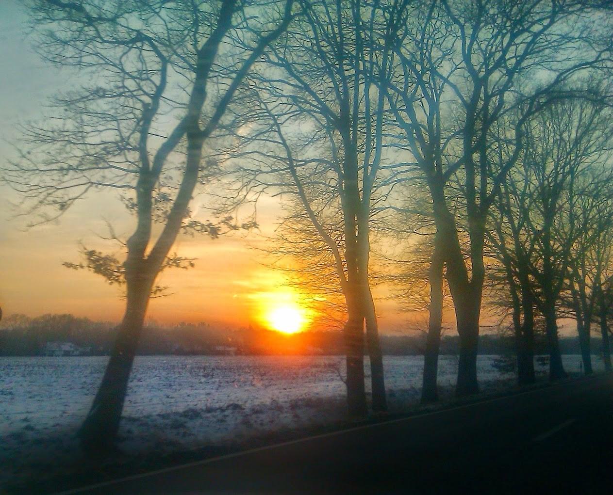 ~ Bild: Wintersonne ~