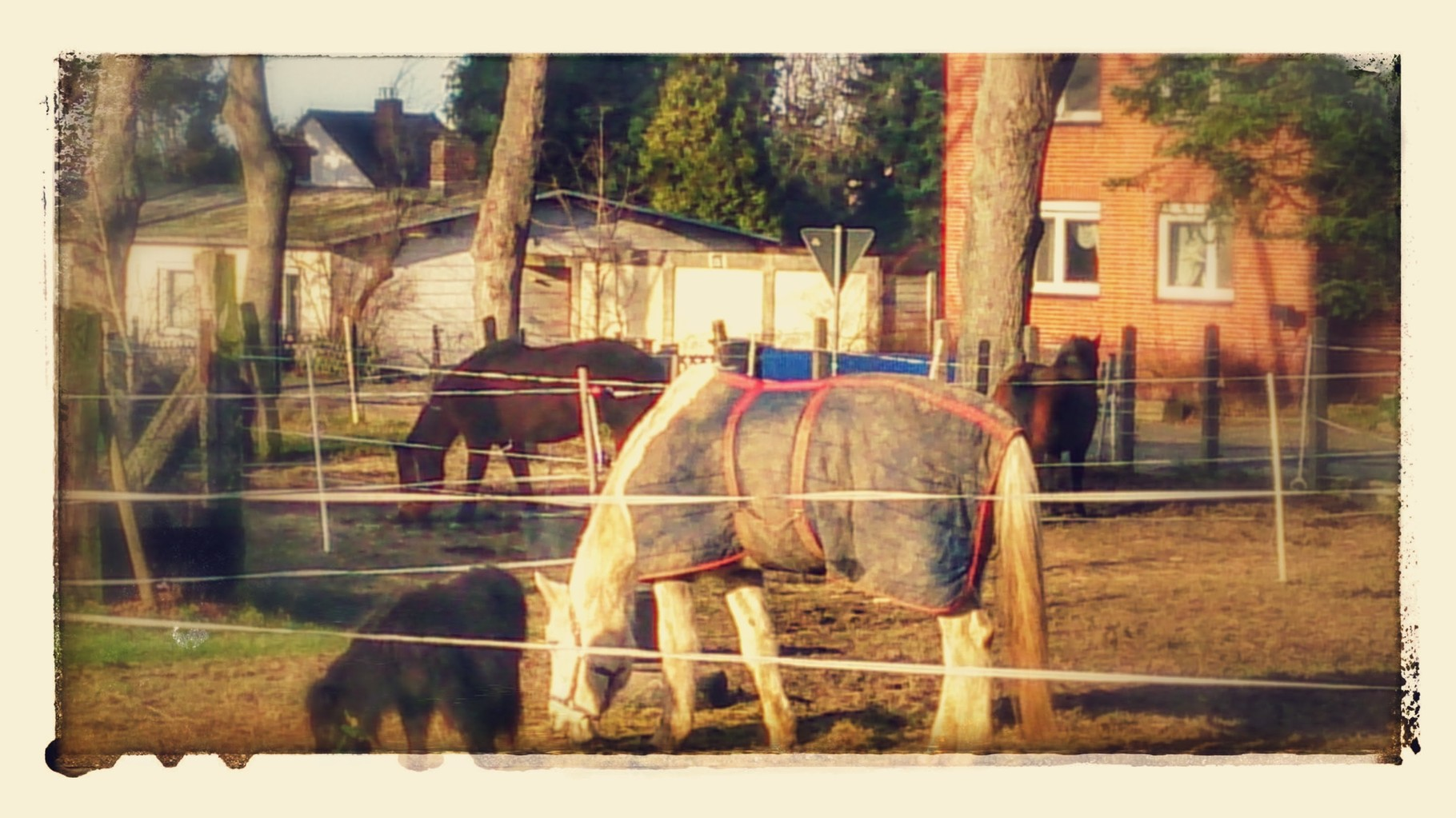 ~ Bild: Special Effects - 'Adenstedt Village Life' ~