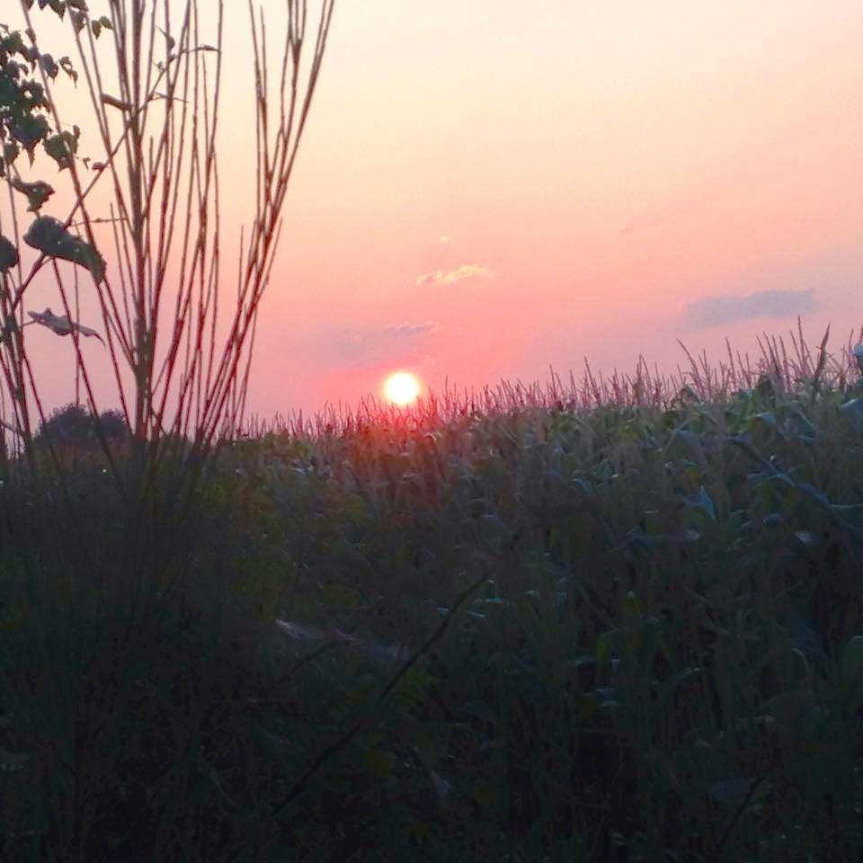 ~ Bild: Sonnenaufgang bei Sittensen ~