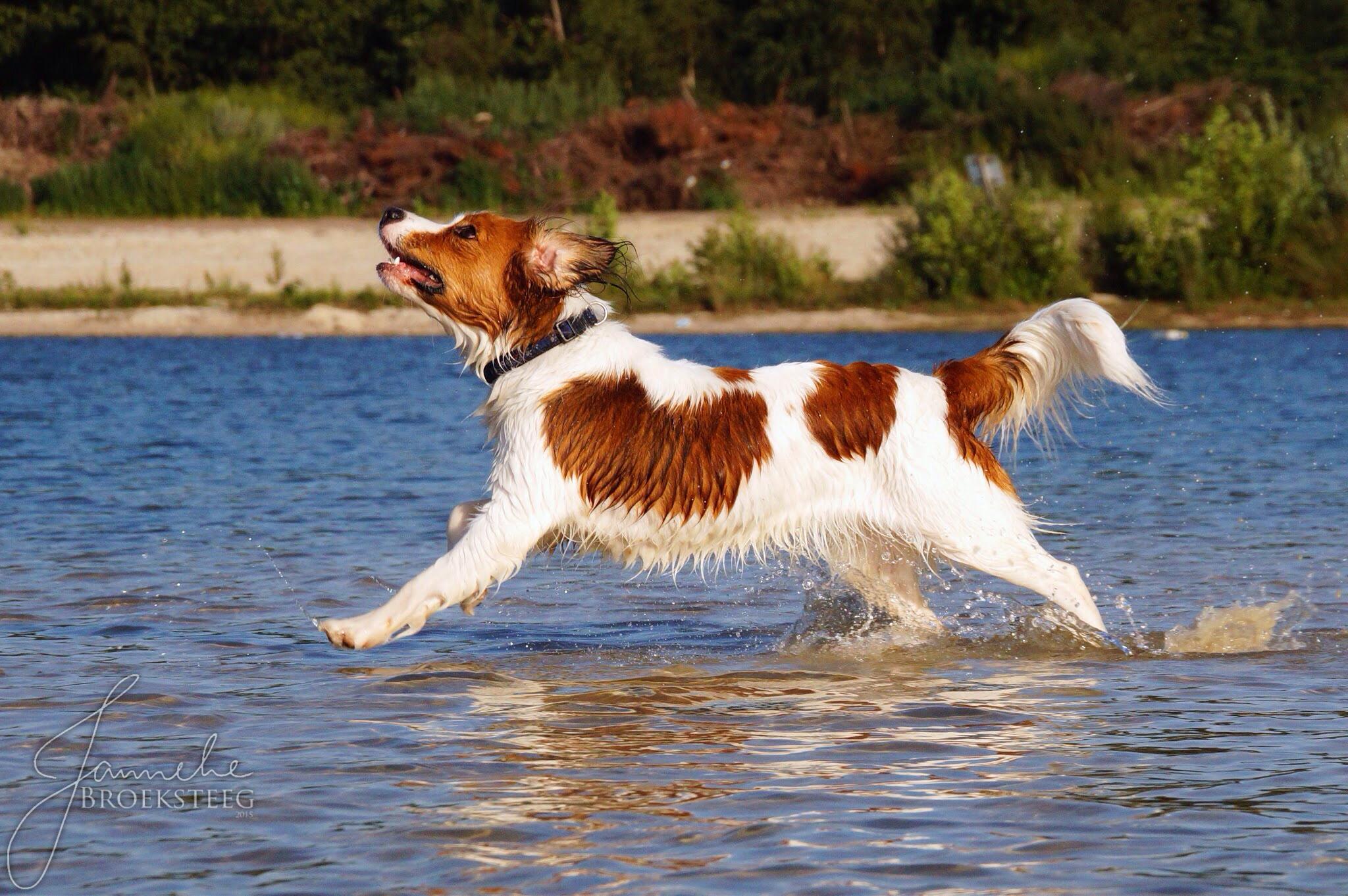 Walkin' on water