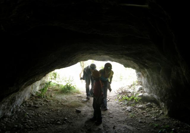 Cueva osos de tella