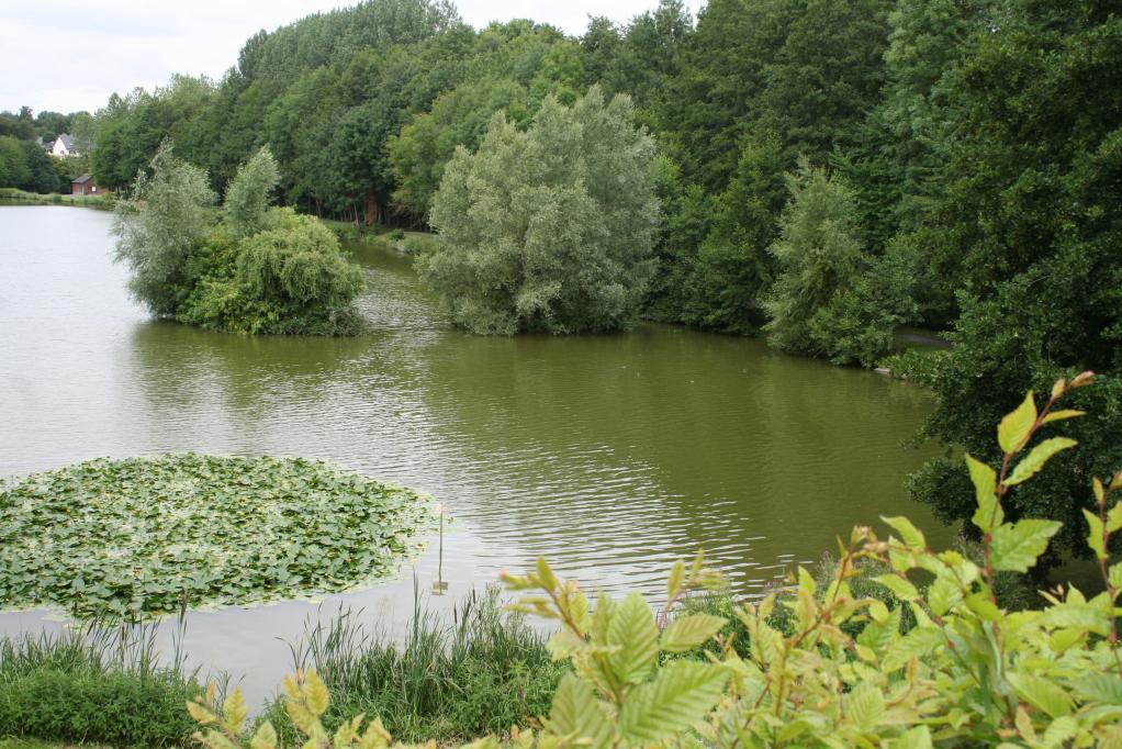 L'étang pêche, promenade et jeux