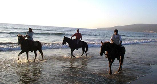Randonnée à cheval au bord de mer