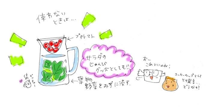 グラスドリッパー コーヒーイラスト 茶谷順子
