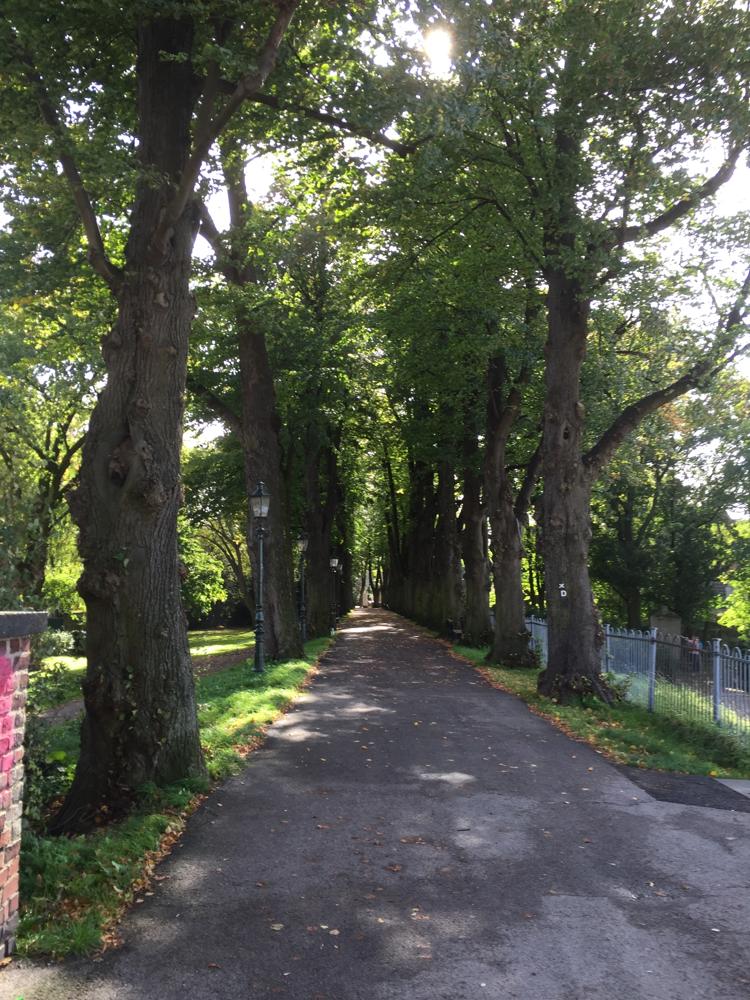 教会からの小道