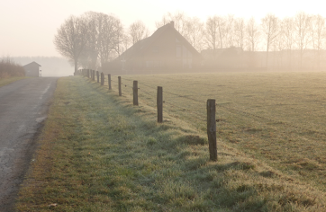 Nebel am Niederrhein - der Weg vor uns