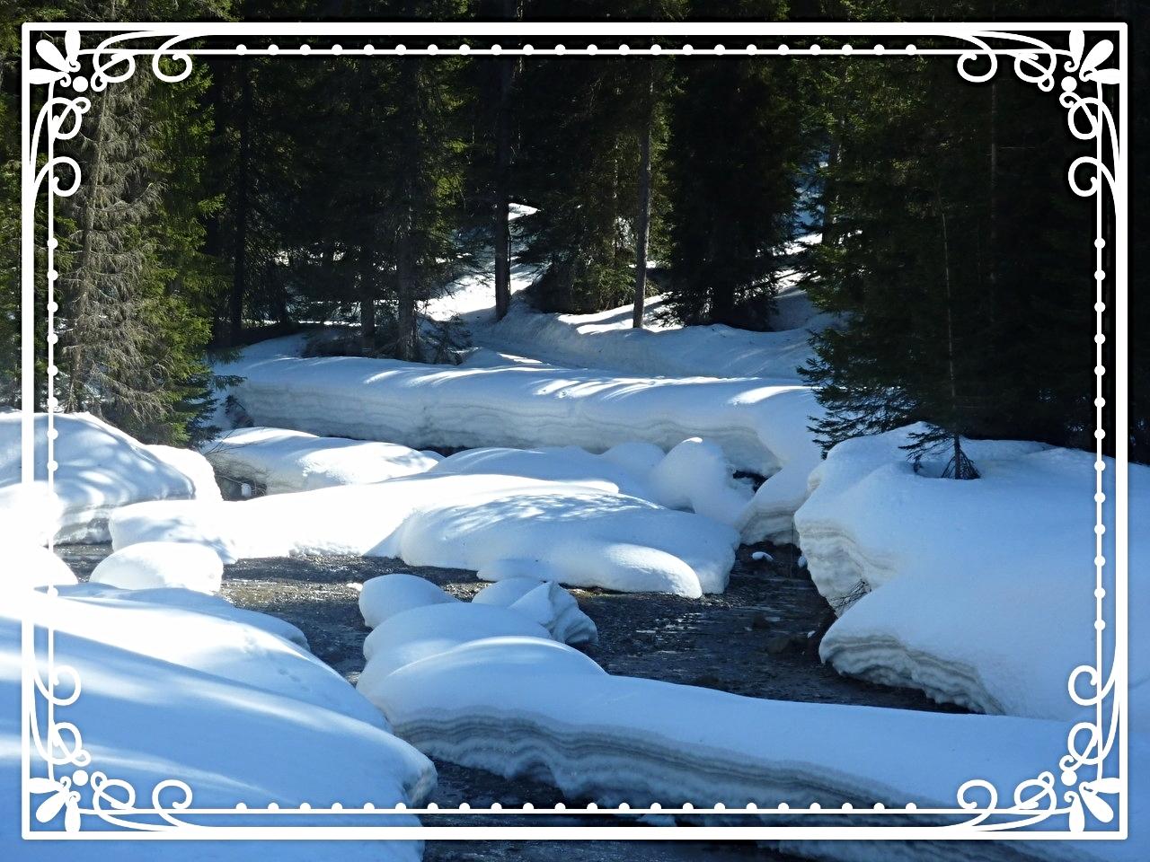 La Dranse sous la neige .