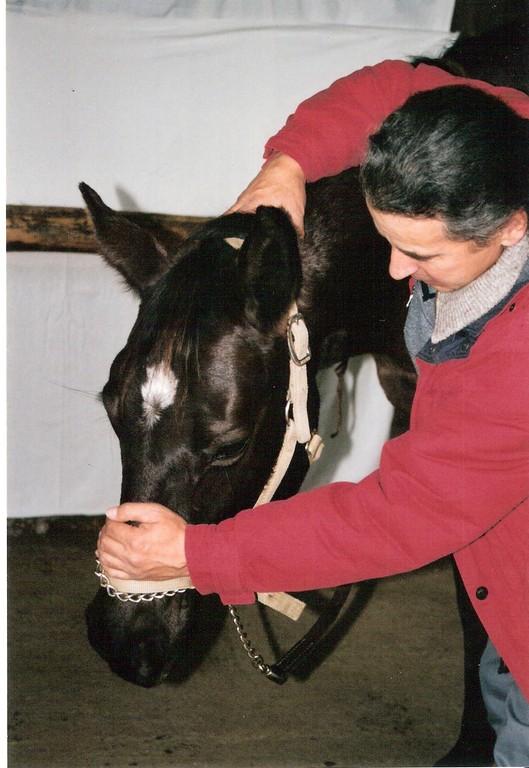 TT.E.A.M.-Körperarbeit - Lösen der Genick- und Rückenmuskulatur