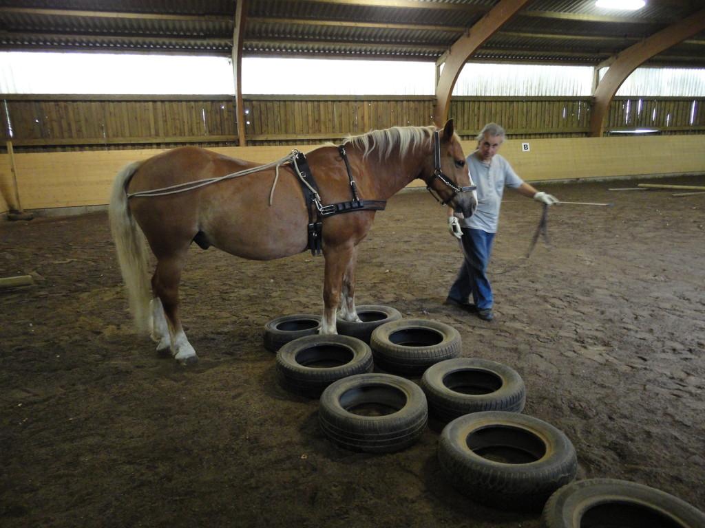 In der Elefantenposition über die Reifen