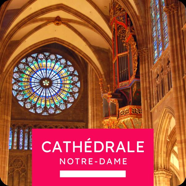 """Visite collective """"La Cathédrale Notre-Dame"""""""