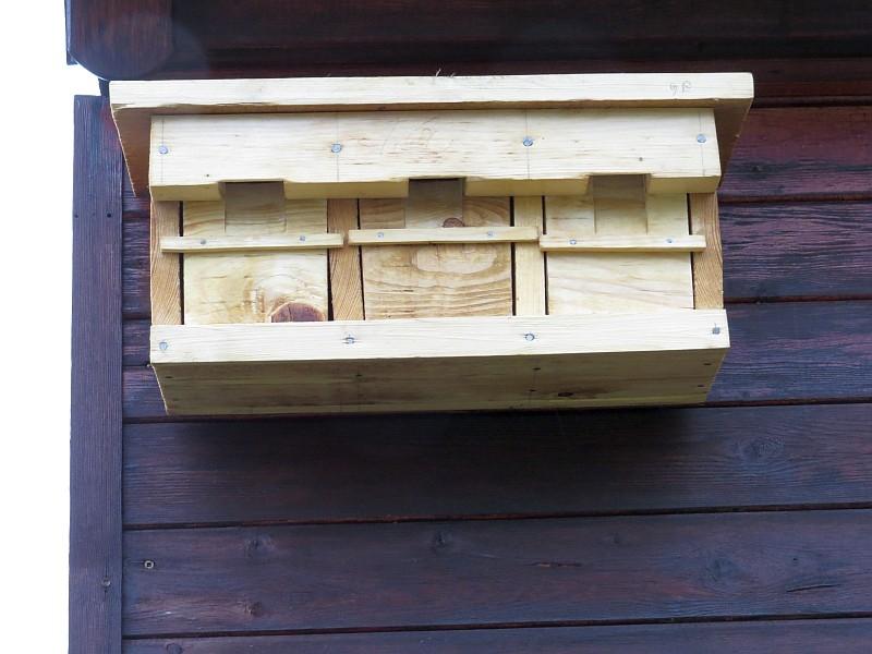 Haussperlinge mögen es gesellig, sie können diesen Koloniekasten beziehen.