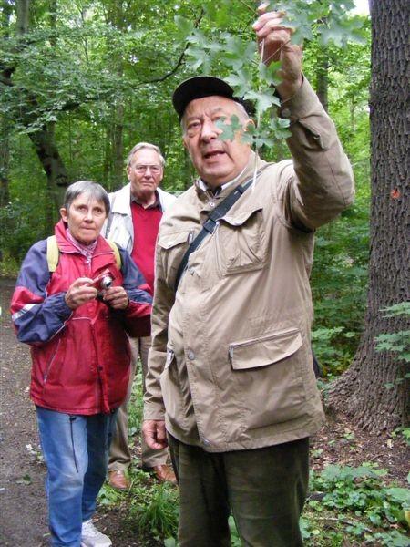 Dr. Gutte stellt die Pflanzen des Auwalds vor und hat zu vielen auch noch eine interessante Geschichte zu erzählen.<p/>Foto: Matthias Fitzke