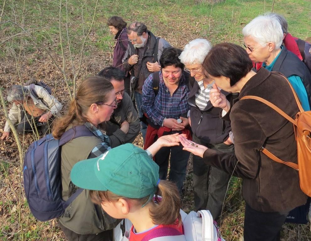Zum Abschluss des Nachmittags führte die Biologin Katrin Schniebs eine Exkursion in die Auwaldnatur. Foto: Karsten Peterlein