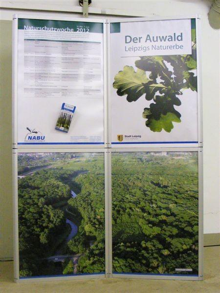 Im Mittelpunkt der Naturschutzwoche 2012 stand der Auwald, Leipzigs bedeutendstes Naturerbe.<p/>Foto: Matthias Fitzke