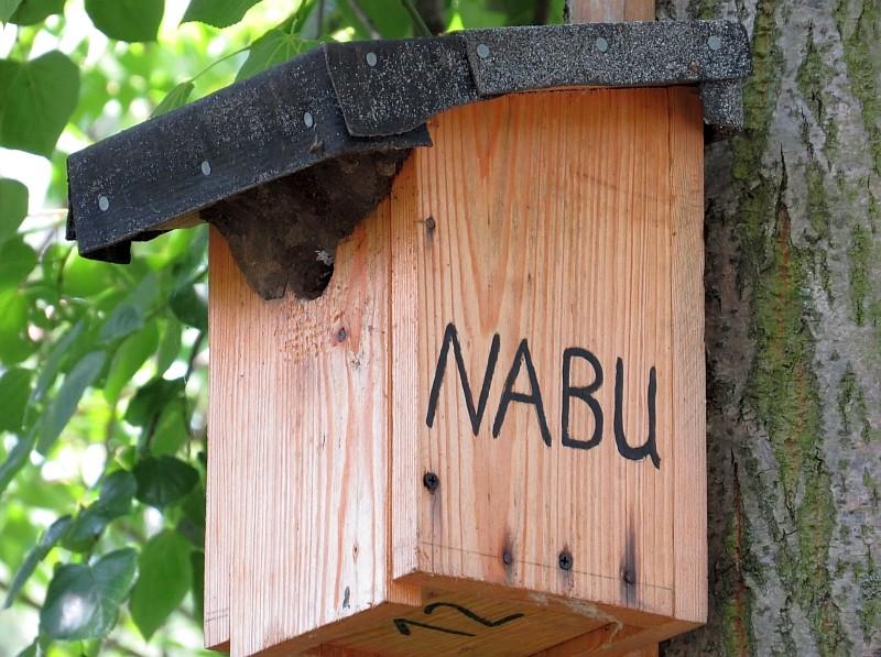 Mit rund 1.500 Nisthilfen versucht der NABU den Vögeln in der Stadt beim Brutgeschäft zu helfen. Diese Kleiberwohnung konnten die Exkursionsteilnehmer auf einem Friedhof bestaunen,...