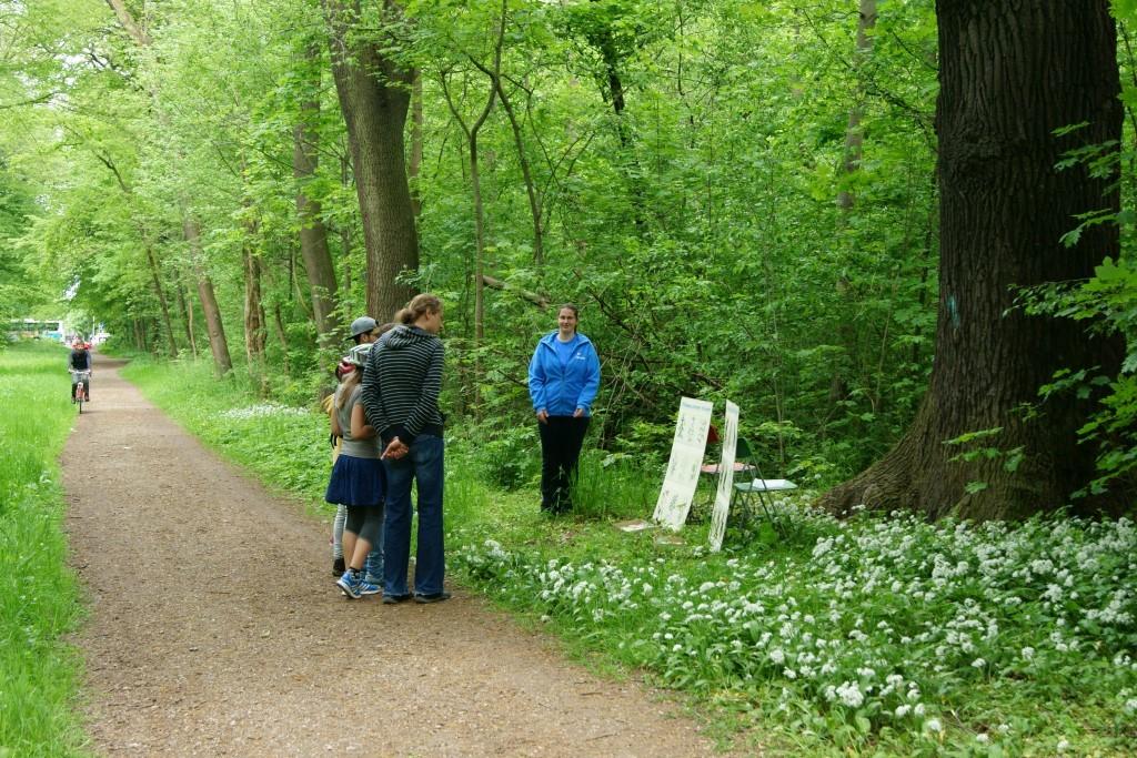 """Rund um die Rätseltafeln konnte man die Vogel- und Pflanzenwelt des Auwalds auch """"life"""" erleben."""