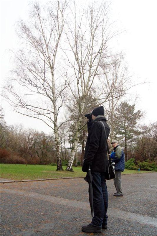 Auf dem Südfriedhof haben 10 Vogelfreunde mit dem NABU Leipzig 11 Vogelarten beobachtet und insgesamt 35 Vögel gezählt.