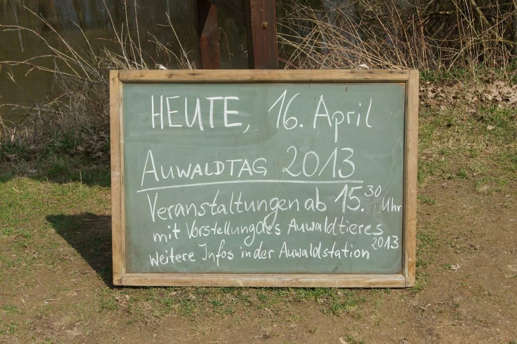 Verkündet wurde die Entscheidung am 16. April, dem Tag des Leipziger Auwaldes. Foto: René Sievert