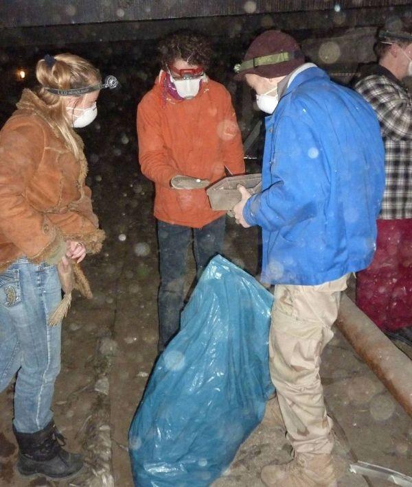 <p>Dabei kamen mehrere Müllsäcke mit altem Nistmaterial zusammen.</p>Foto: Karsten Peterlein
