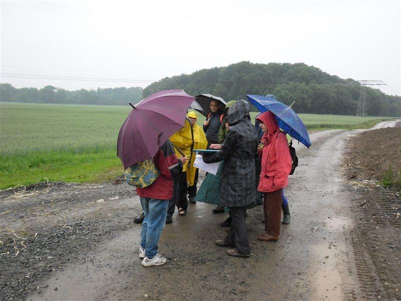 Zwischenstopp an einem Weizenfeld: Die Leipziger Aue hat fruchtbaren Boden und wird auch landwirtschaftlich genutzt.<p/>Foto: René Sievert