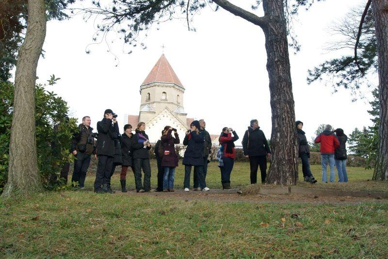 Auf dem Südfriedhof ist der NABU Leipzig ganzjährig aktiv, betreut zum Beispiel eine Vielzahl von Nistkästen. So befinden sich im Krematorium mehrere Bruthilfen für Dohlen bzw. für Turmfalken. Foto: René Sievert