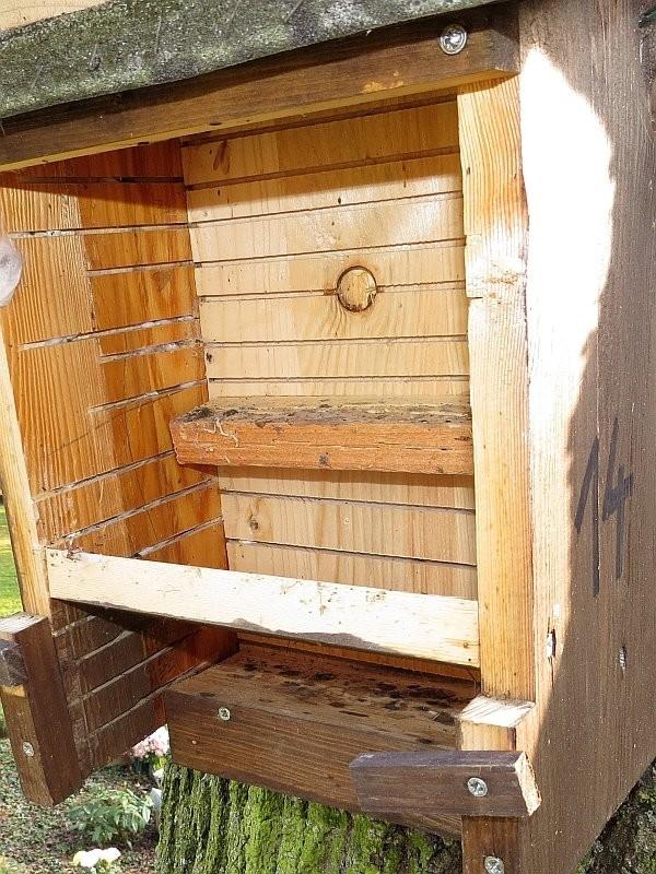 Auch in diesen Fledermauskästen liegt Kot von Fledermäusen.</p>Foto: NABU Leipzig