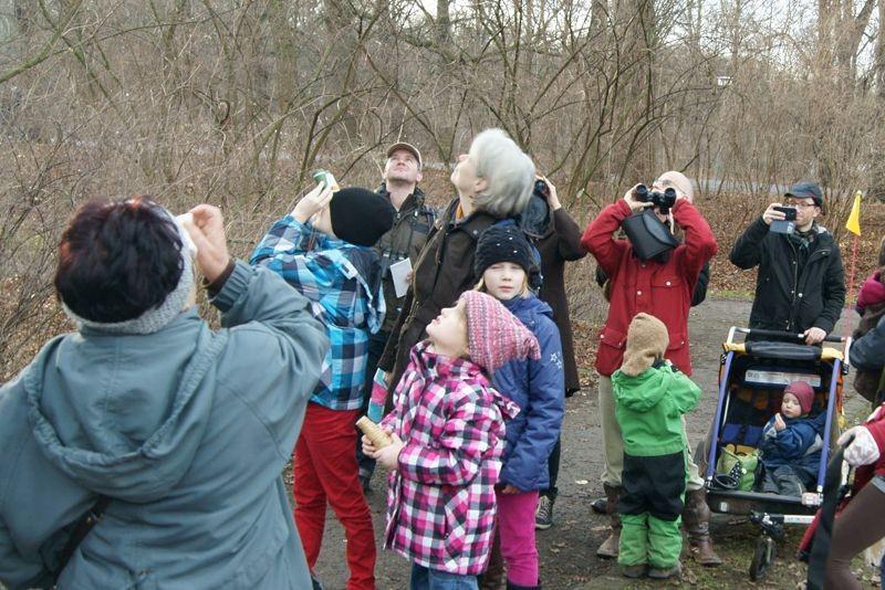 Was fliegt denn da? - Bei der Stunde der Wintervögel werden auch die Baumkronen sorgfältig abgesucht. Foto: René Sievert