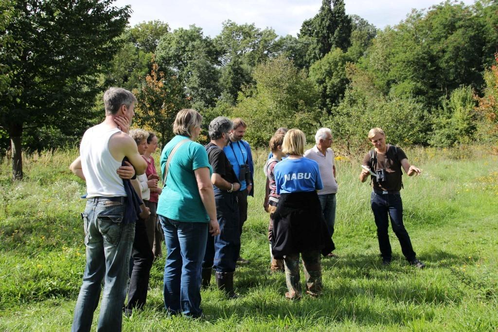 Exkursion zu Flora und Fauna auf der NABU-Wiese.</p>Foto: Philipp Steuer