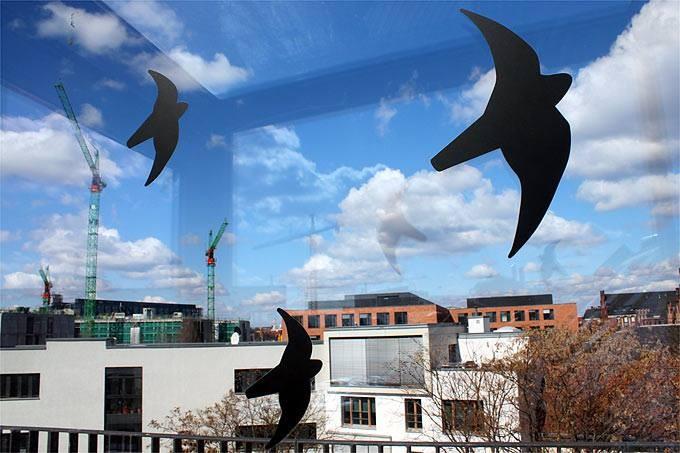 Diese Vogelsilhouetten würden erst einen sicheren Schutz ermöglichen, wenn sie noch dichter geklebt werden. Als Faustregel gilt: Die Vögel sind erst vor Anflug geschützt wenn das Fenster keine Freifläche mehr bietet die größer als eine Handfläche ist.