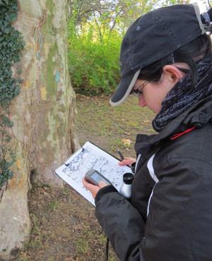 NABU-Mitstrreiterin Daniela Dunger bei der Höhlenbaumkartierung. Foto: NABU Leipzig