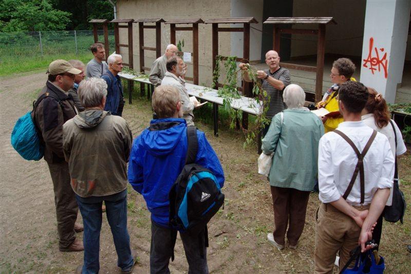 Vor der Exkursion durch die 'Burgaue' stellte Dr. Peter Otto (Universität Leipzig) den Teilnehmern einige Pflanzen vor, die man im Auwald finden kann.<p/>Foto: René Sievert