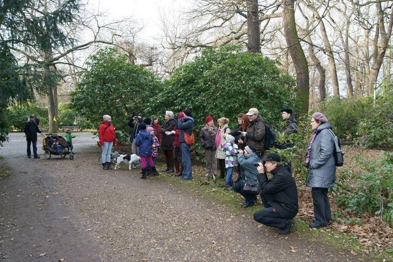 An diesem Vogelfutterplatz im Clarapark konnte man längere Zeit verweilen und dabei verschiedene Futtergäste wie Blaumeise, Kohlmeise und Kleiber beobachten. Foto: René Sievert