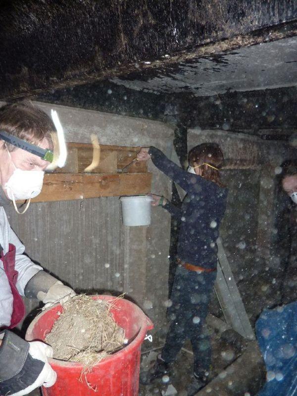 Die Arbeit auf den Dachböden ist eine staubige und anstrengende Angelegenheit.