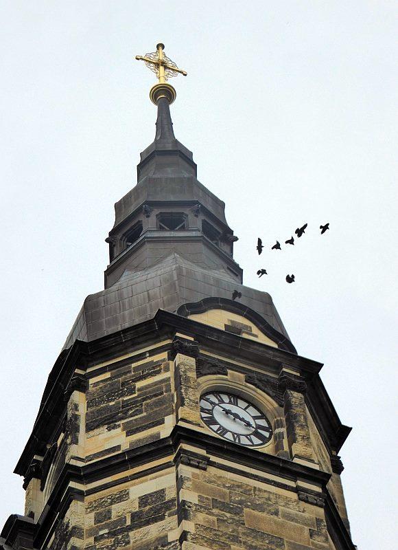 Acht Dohlen fliegen um den Kirchturm. Drei Paare haben ihren Brutplatz in Nistkästen über der Turmuhr.