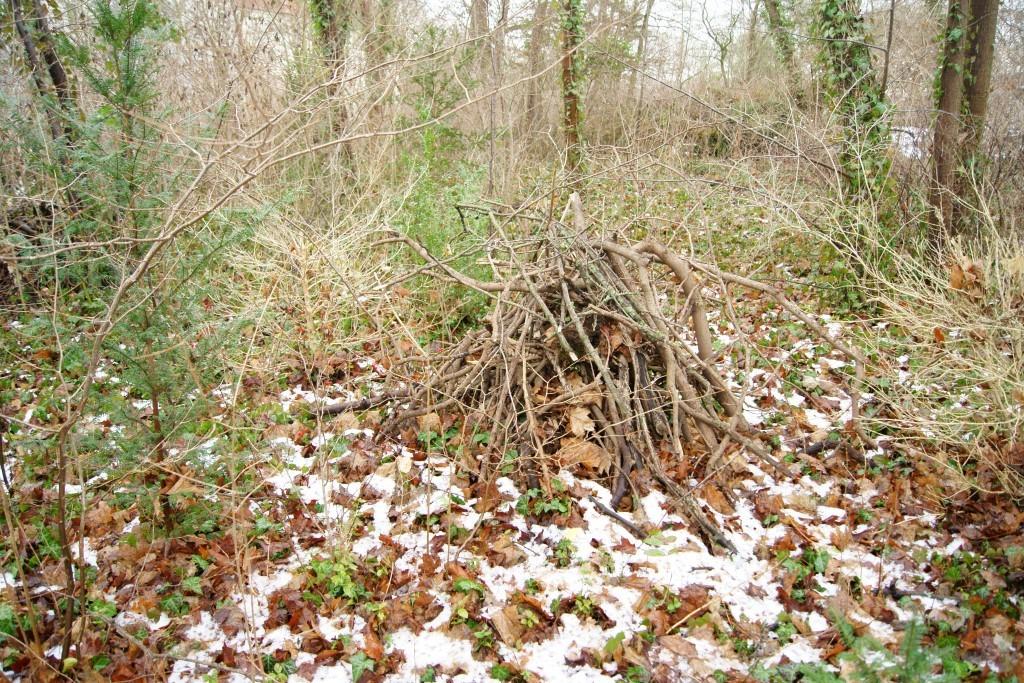 Laub- und Totholzhaufen dienen Igeln und anderen Tieren als Winterquartier.