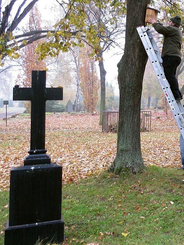 Die Ruhe auf dem Friedhof genießen, aber bald ist wieder etwas Gezwitscher erlaubt, wenn in den renovierten Vogelwohnungen die Brutsaison beginnt.</p>Foto: NABU Leipzig