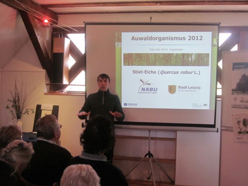 Rolf A. Engelmann - ENEDAS Verein zur Förderung der Umweltbildung und Umweltforschung e. V. - stellte die Auwaldpflanze 2012 genauer vor.
