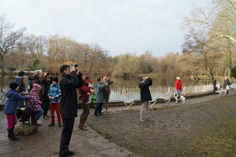 Die Exkursionsroute durch den Clarapark führte auch am Teich vorbei, wo zahlreiche Enten gezählt werden konnten. Die Vogelfreunde und einige Passanten wurden bei der Gelegenheit noch einmal darauf hingewiesen,