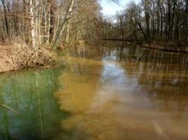Mündung des Floßgrabens in die an Eisenhydroxid reiche Pleiße, 29.03.2006. Fotos: NABU Leipzig