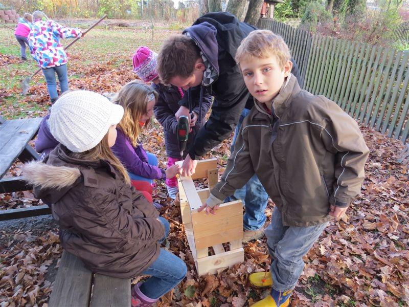 Um einem Igel die optimale Überwinterung zu ermöglichen, haben Schüler der 24. Grundschule eine Igelkiste gebaut.
