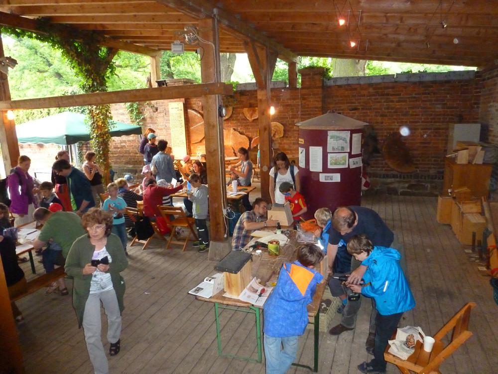 Zahlreiche Mitmachangebote beim StadtNaturErleben. Viele Naturfreunde, darunter zahlreiche Familien, hatten den Weg in die Auwaldstation Leipzig gefunden und erlebten unterhaltsame und lehrreiche Stunden.</p>Foto: Daniela Dunger