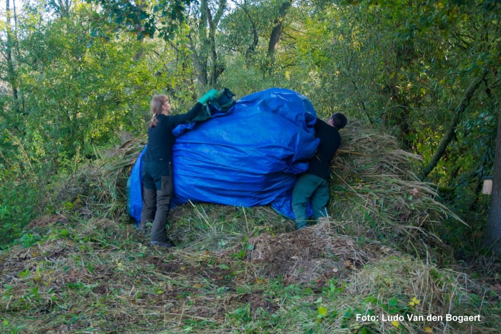 Und am Rand kompostiert.</p>Foto: Ludo Van den Bogaert