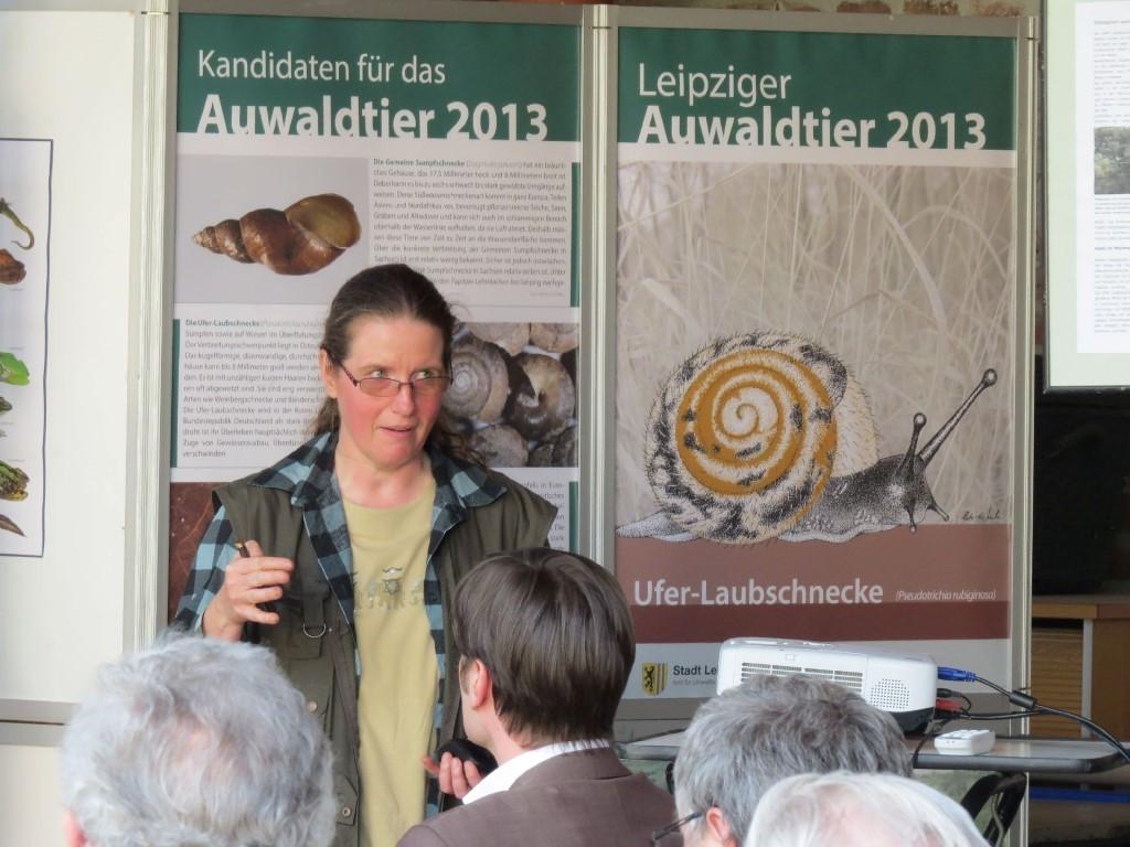 Die Weichtierexpertin Katrin Schniebs (Museum für Tierkunde Dresden) stellte die Ufer-Laubschnecke und weitere Weichtiere der Leipziger Auenlandschaft näher vor. Foto: Karsten Peterlein