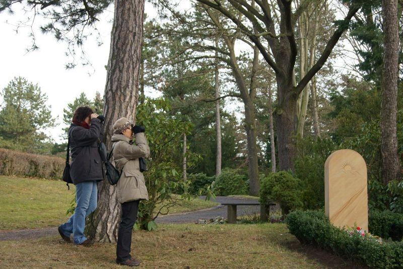 Friedhöfe sind wichtige Orte des Lebens in der Großstadt. Zahlreiche Vögel, aber auch andere Tierarten finden hier eine grüne Oase. Foto: René Sievert
